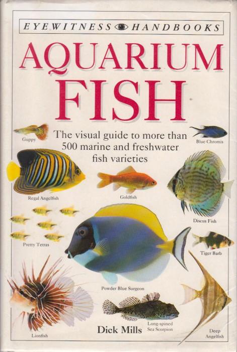 Foto do produto Aquarium Fish