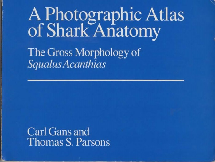 Foto do produto A Photographic Atlas of Shark Anatomy: The Gross Morphology of Squalus Acanthias