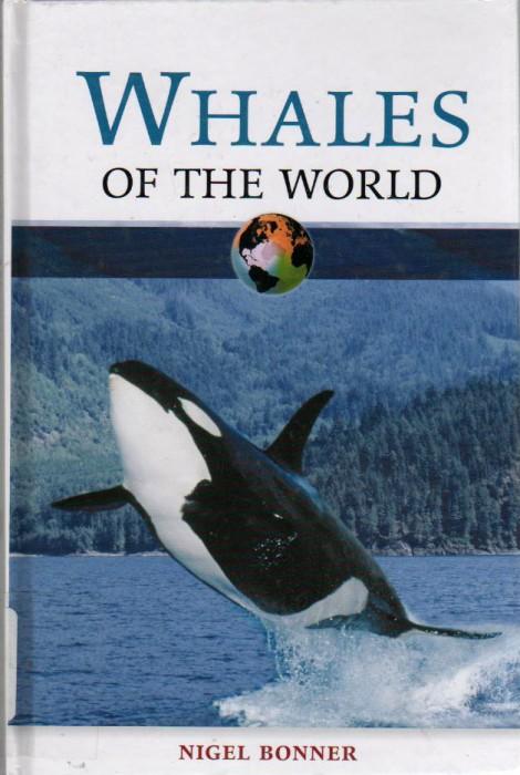 Foto do produto Whales of the World