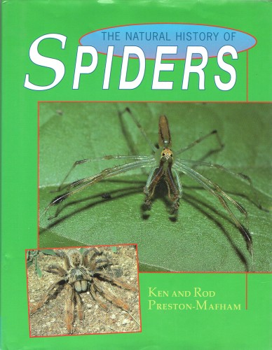 Foto do produto The Natural History of Spiders