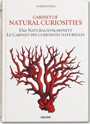 Foto do produto Cabinet of Natural Curiosities