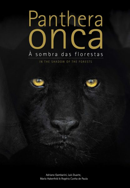 Foto do produto Panthera onca - À sombra das florestas