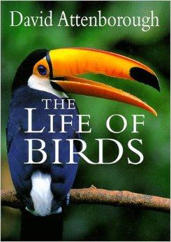 Foto do produto The Life of Birds