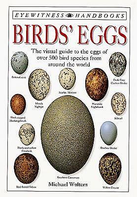 Foto do produto Birds' Eggs