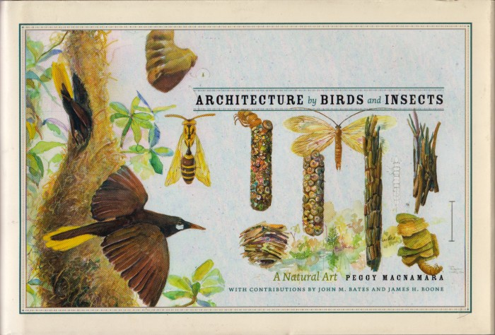 Foto do produto Architecture by Birds and Insects: A Natural Art