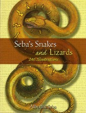 Seba's Snakes and Lizards: 240 Illustrations