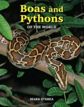 Boas & Pythons of the World (O'Shea)