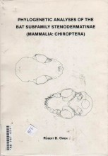 Phylogenetic Analyses of the Bat Subfamily Stenodermatinae (Mammalia: Chiroptera) (Special Publicati
