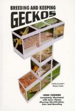 Breeding and Keeping Geckos