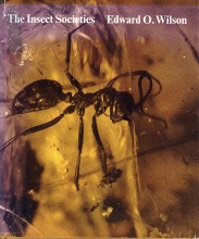 The Insect Societies