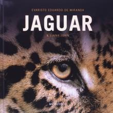 Jaguar, o Rei das Américas