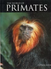 The World of Primates