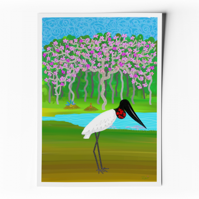 Pôster Lendas e Relendas das Aves do Brasil