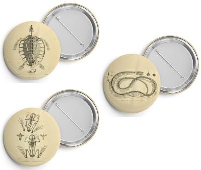 Buttons ERPÉTOLOGIE GÉNÉRALE - Duméril & Bibron, 1839 - Esqueletos (3 unid)