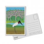 Foto do produto Cartão postal Lendas e Relendas das Aves do Brasil