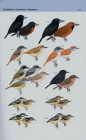 Foto do produto A Field Guide to the Birds of Brazil
