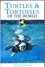 Foto do produto Turtles and Tortoises of the World