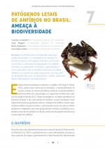 Foto do produto Herpetologia brasileira contemporânea