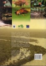 Foto do produto Janelas para a biodiversidade no Parque Nacional do Jaú: uma estratégia para o estudo da biodiversidade na Amazônia