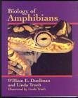 Foto do produto Biology of Amphibia (Duellman & Trueb, 1994)