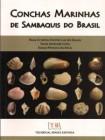 Foto do produto Conchas Marinhas de Sambaquis do Brasil