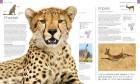 Foto do produto Wildlife of the World