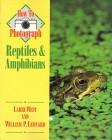 Foto do produto How to photograph Reptiles and Amphibians