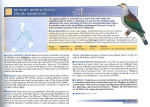 Foto do produto Threatened birds of the world: the official source for birds on the IUCN Red List