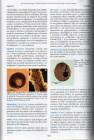 Foto do produto Glossário de Protistologia: Verbetes Utilizados no Estudo de Protozoários, Algas e Protistas Fungoid