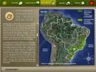 Foto do produto Guia Interativo Serpentes da Mata Atlântica / The Atlantic Forest Snakes Interactive Guide
