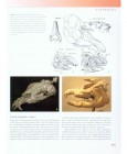 Foto do produto The Princeton Field Guide to Prehistoric Mammals