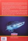 Foto do produto Tubarões No Brasil - Guia prático de identificação