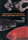 Foto do produto Color Atlas of the Diseases of Fishes, Amphibians, & Reptiles